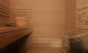 BLOG: Nakup domače savne