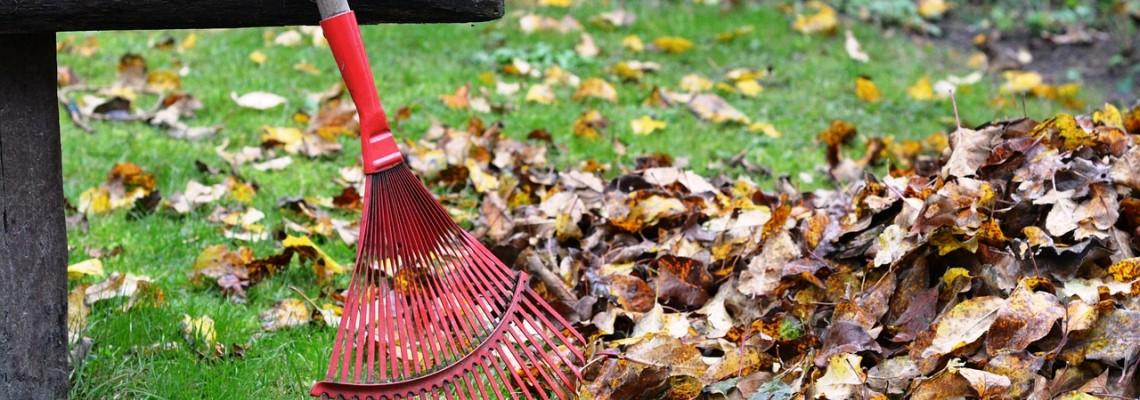 BLOG: Kako izbrati puhalnik za listje?